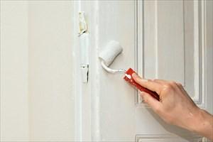 コケによる外壁塗装の劣化を防ぐには?